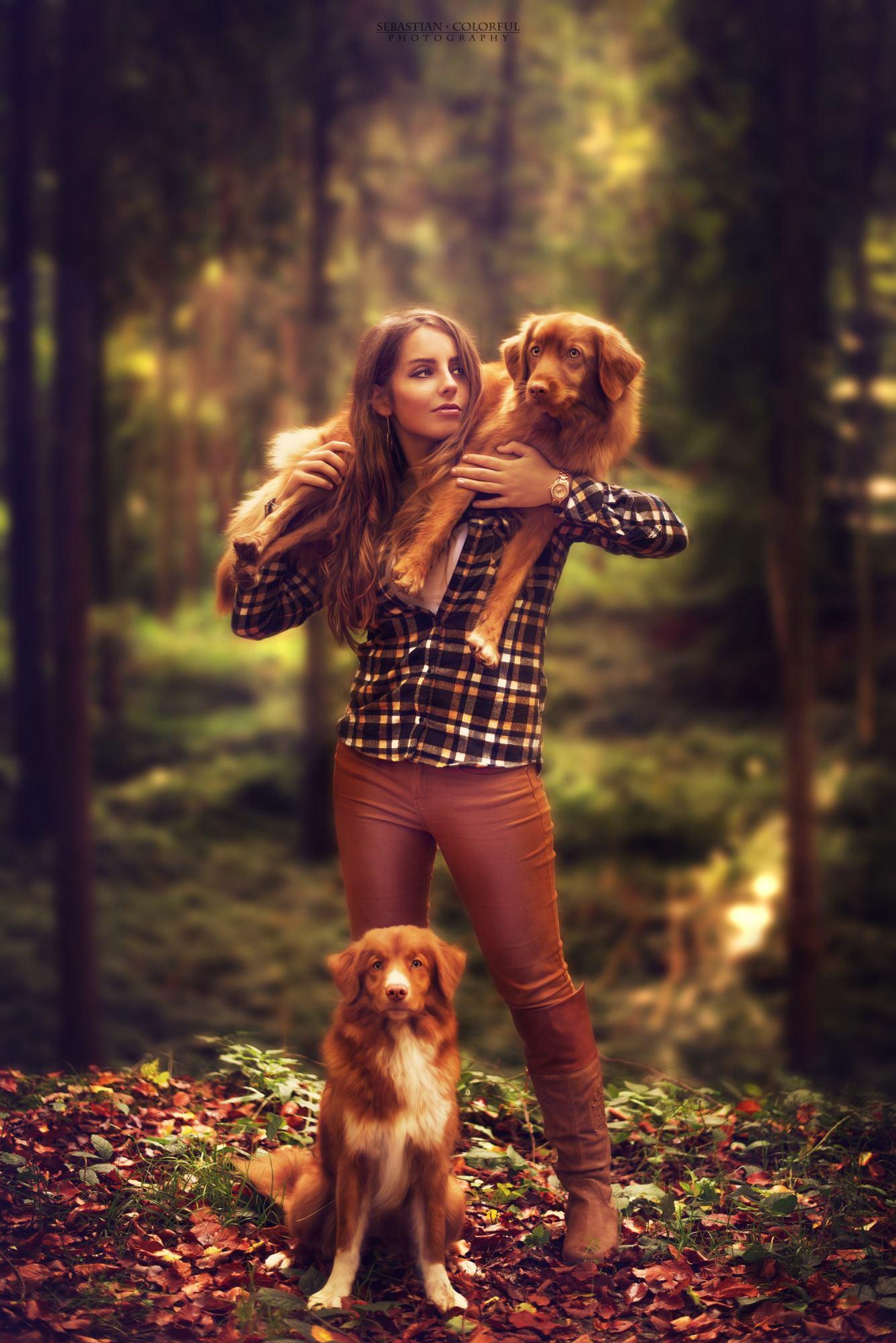 Sebastian Colorful Zoe Wald Hunde 3